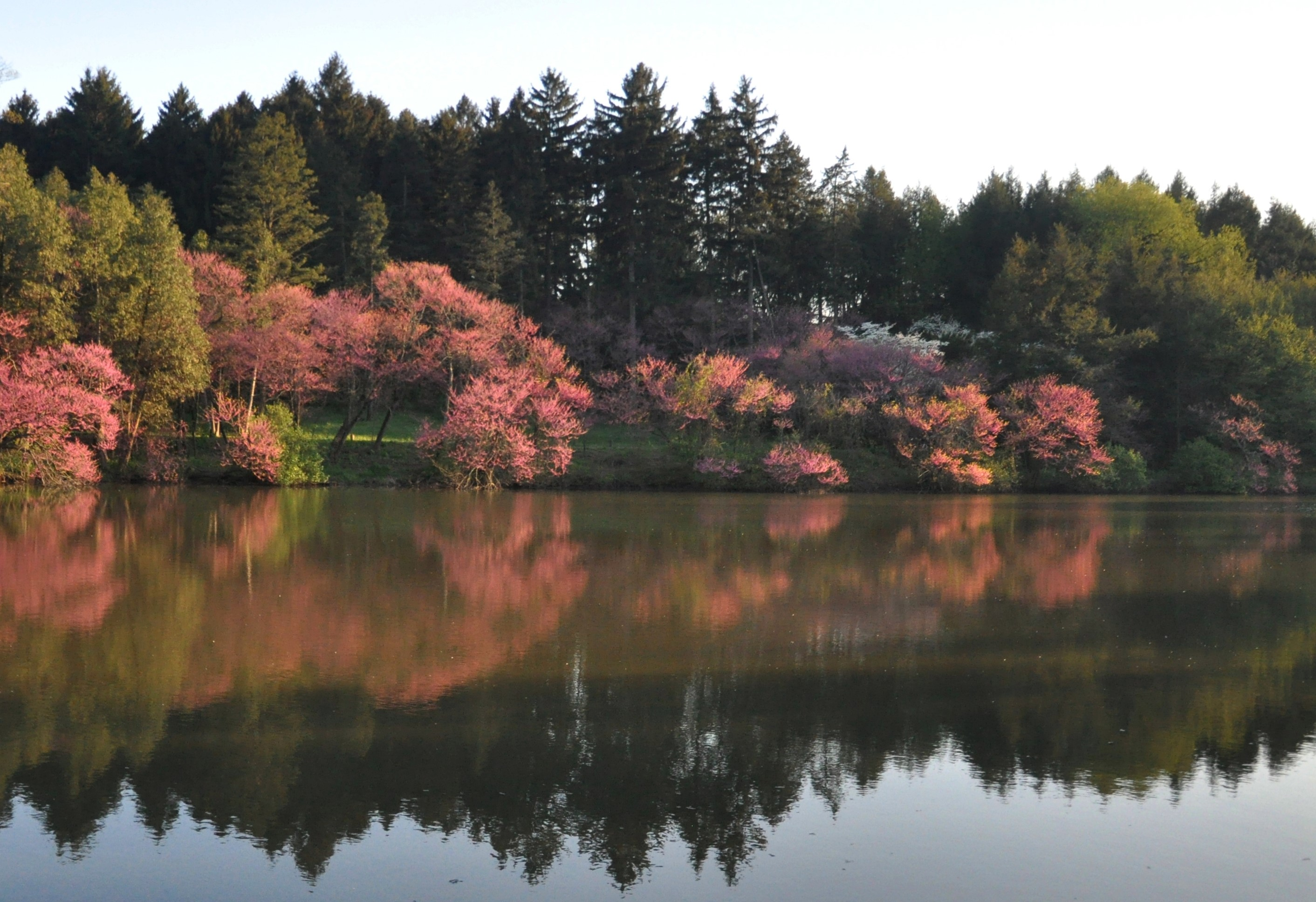 A family walks through fall beauty at the arboretum